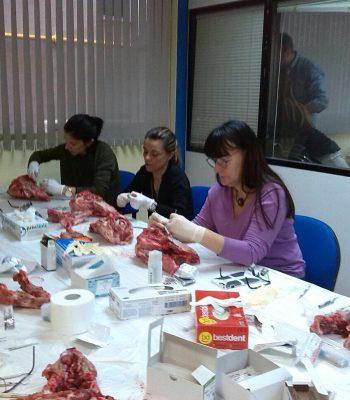 Cierre-Modular-Cirugia-Plástica-Periodontal-Dr.Crespo-12