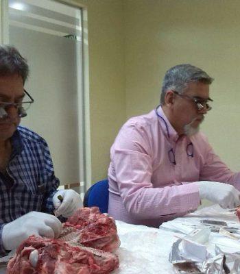 Cierre-Modular-Cirugia-Plástica-Periodontal-Dr.Crespo-15