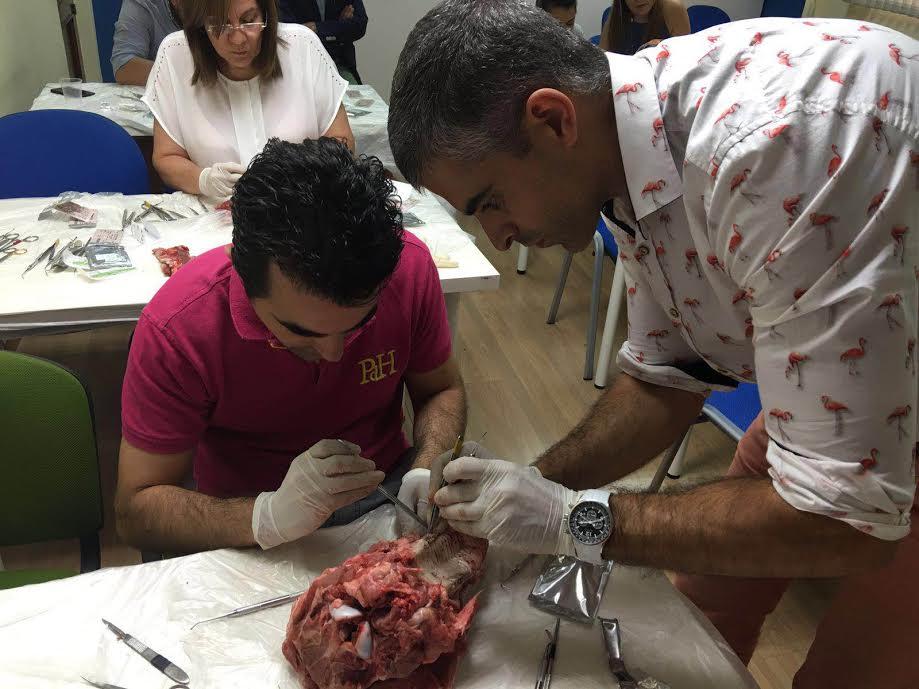 Último módulo del grupo 1 de prótesis sobre implantes - Fomento Profesional-6