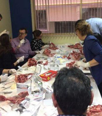 Cierre-Modular-Cirugia-Plástica-Periodontal-Dr.Crespo-16
