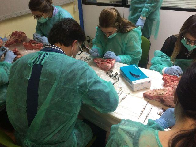 Módulo 2 de la segunda edición del curso de Cirugía Plástica Periodontal - momentos 1